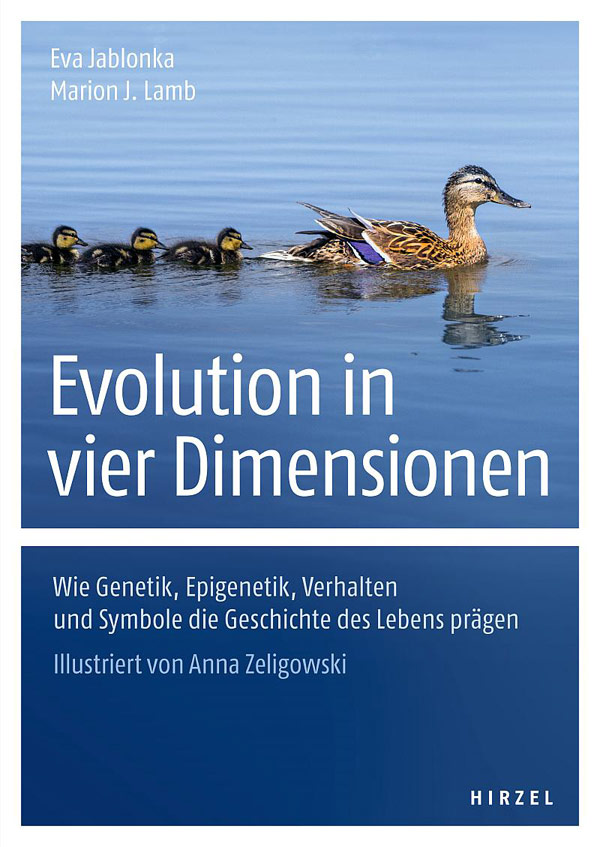 Evolution in vier Dimensionen